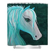 Pastel Horse Shower Curtain