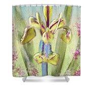 Pastel Iris Shower Curtain
