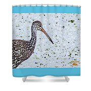 Pastel Limpkin Shower Curtain