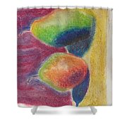 Pastel Pairs Shower Curtain