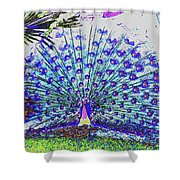 Pastel Peacock Shower Curtain