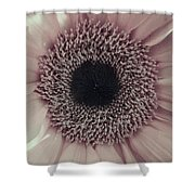 Pastel Pink Daisy Shower Curtain