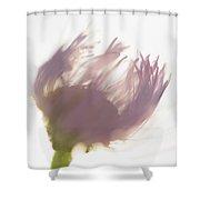 Pastel Purple Flower Shower Curtain