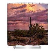 Pastel Sonoran Skies At Sunset  Shower Curtain