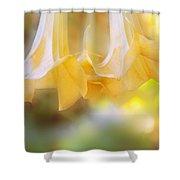 Pastel Trumpets Shower Curtain