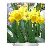Pastel Tulips Shower Curtain