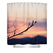 Pastel Twig Shower Curtain