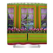 Pastle Windows Shower Curtain
