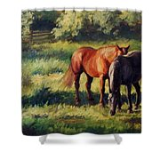 Pasture At Whites Crossing      Horse Painting Shower Curtain