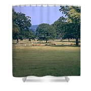 Pasture Shower Curtain