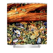 Patagonian Shore Shower Curtain
