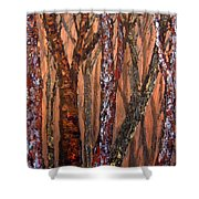 Patchwork Forest Shower Curtain