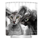 Paterbald Group No 01 Shower Curtain