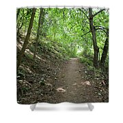 Path By The River Shower Curtain