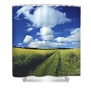 Path In A Countryside Shower Curtain