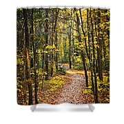 Path In Fall Forest Shower Curtain