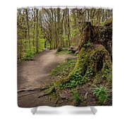 Path In Judy Woods Shower Curtain