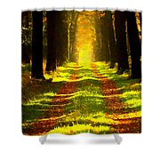 Path In The Forest 715 - Painting Shower Curtain