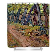 Path In The Garden Of The Asylum, By Vincent Van Gogh, 1889, Kro Shower Curtain