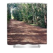 Path Into The Jungle Shower Curtain