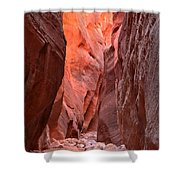 Path Of Pastels Shower Curtain