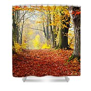 Path Of Red Leaves Towards Light In Fall Forest Shower Curtain