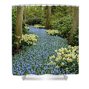 Path Of The Beautiful Spring Flowers Shower Curtain