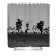 Path Of Trees On Farm Shower Curtain