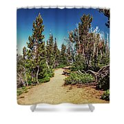 Path On Top Of Mt. Howard, Wallowa Or Shower Curtain