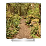 Path Through Mossy Forest Shower Curtain