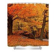 Path Through New England Fall Foliage Shower Curtain