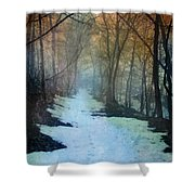 Path Through The Woods In Winter At Sunset Shower Curtain by Jill Battaglia