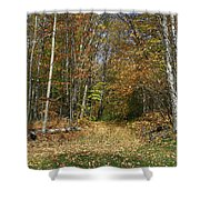 Path To Joiner Brook Shower Curtain