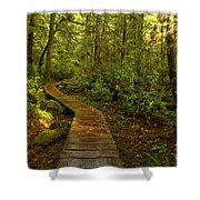 Path To Serenity Shower Curtain