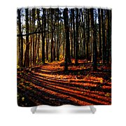 Path To Serenity - Nickerson State Park Shower Curtain