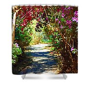 Path To The Gardens Shower Curtain