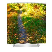 Path To Unknown Shower Curtain