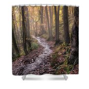 Path Trough The Woods Shower Curtain