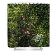 Path With Flowers Shower Curtain