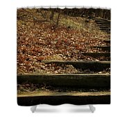 Paths Of The Seasons Shower Curtain