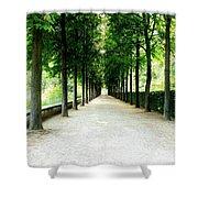 Pathway Shower Curtain