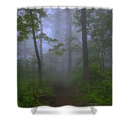 Pathway Through The Fog Shower Curtain