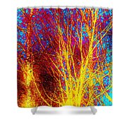 Pathways Of Color Shower Curtain