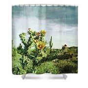 Patina Green Desert Bloom Shower Curtain