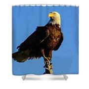 Patriot Guard Shower Curtain