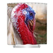 Patriotic Turkey Shower Curtain