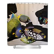 Pats Aquarium  Shower Curtain by Cliff Spohn