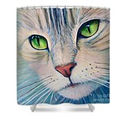Pats Cat Shower Curtain