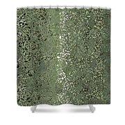 Pattern 108 Shower Curtain
