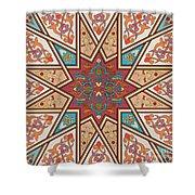 Pattern Art 005 Shower Curtain